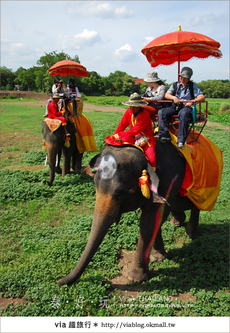 【泰國旅遊】大城騎大象之旅~漫遊在古城之中的小旅行