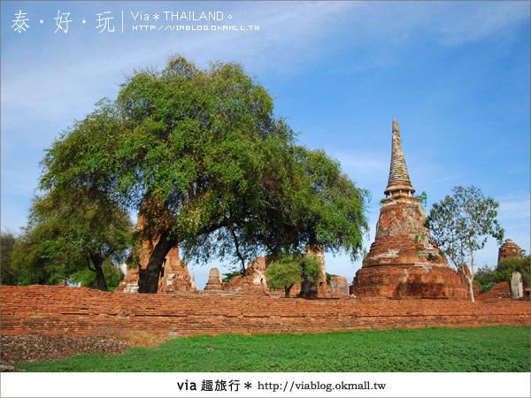 【Via玩泰國】泰國古味之旅~和我走一趟大城