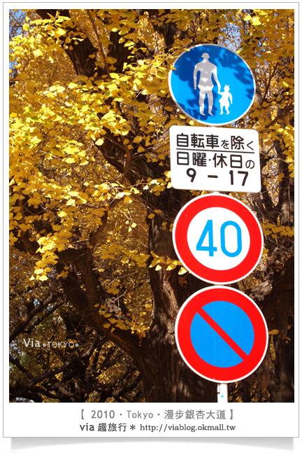 【京都賞楓】Day1●京都東福寺,遇到爆炸的楓紅美景~