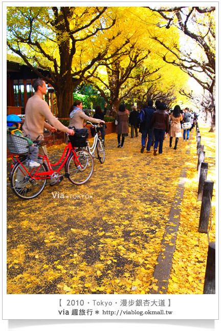 【東京自由行】Via玩東京‧推薦秋冬必去!明治神宮外苑銀杏大道!