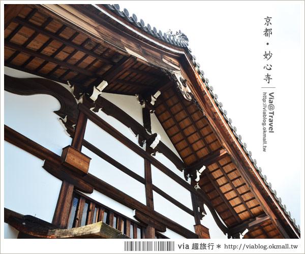 【京都寺廟】京都妙心寺~列為重要文化財的日式寺院!