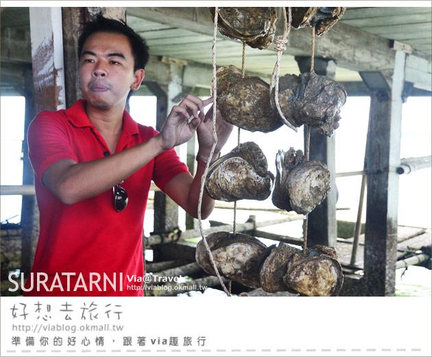 【泰國美食】Sinmana Farmstay生蠔農場~泰好食!海上人家大啖生蠔趣!
