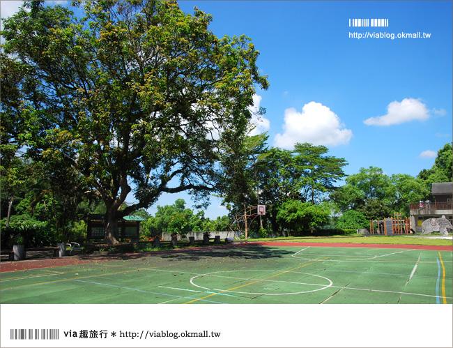 【南投景點】南投中寮清水國小~歐式木屋的森林系小學!