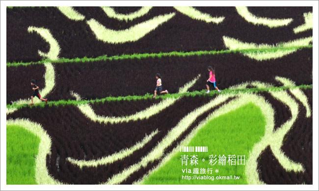 【日本東北旅遊】via東北輕夏小旅行(1)青森縣|田舍館村~夢幻的彩繪稻田!