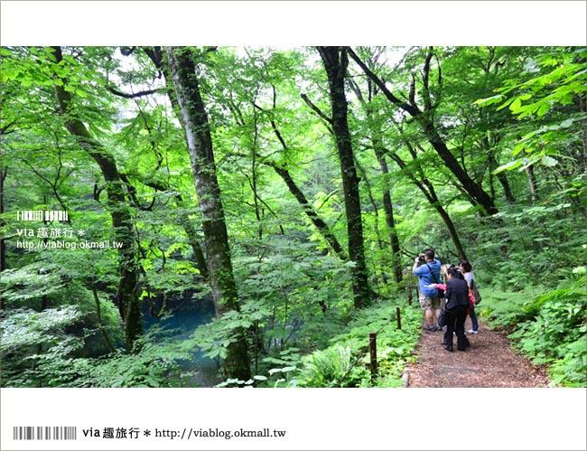 【青森遊記】via東北輕夏小旅行(5)青森白神山地十二湖~拜訪夢幻「青池」!