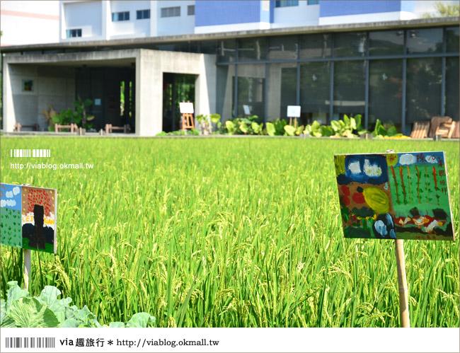【苗栗苑裡】山水有機稻場~帶孩子們來稻田間玩耍吧!