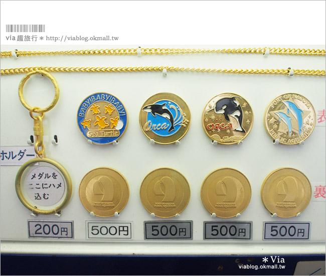 【名古屋景點推薦】名古屋港水族館~大人氣的虎鯨、小白鯨、企鵝、海豚等你來玩!