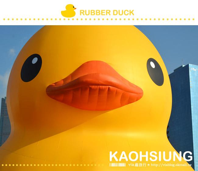 【黃色小鴨】高雄黃色小鴨光榮碼頭~9/19-10/20超可愛、超療癒登場!