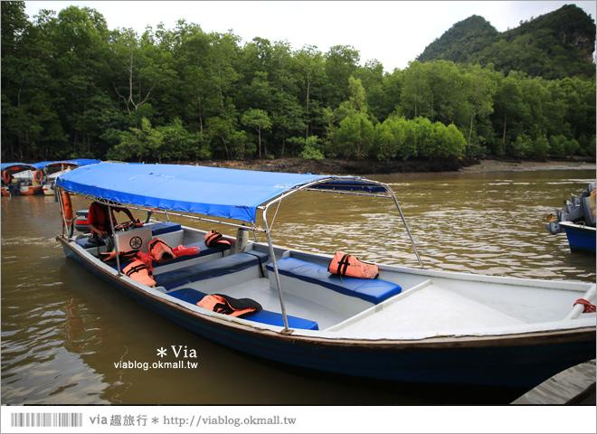【蘭卡威自由行】蘭卡威一日遊~高空纜車、天空步道、麒麟河紅樹林生態之旅