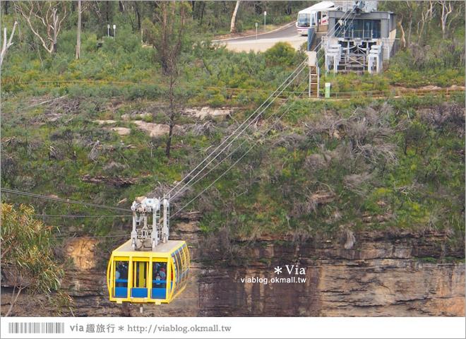 【澳洲旅遊景點】藍山一日遊(下)三姐妹峰、回聲角及世界最陡的纜車之旅