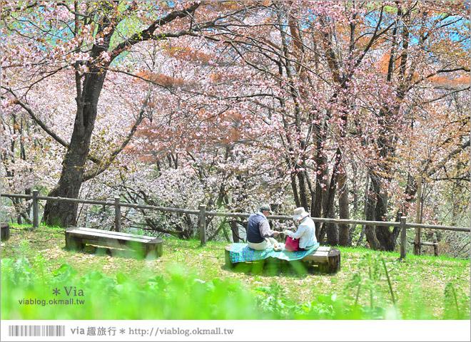 【北海道自由行】北海道行程推薦/北海道自駕自助旅行~夏季賞花六日遊《行程篇》