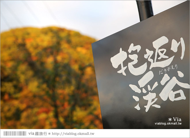 【東北賞楓景點】秋田抱返溪谷~山林間美好的溪谷景觀!秋天滿是紅葉時最美