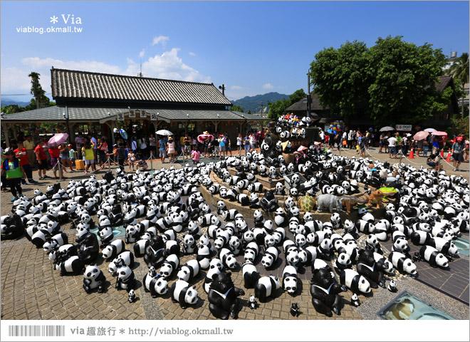 【南投紙熊貓展2014】南投紙貓熊巡迴展~集集車站被萌翻的熊貓大軍佔領囉!