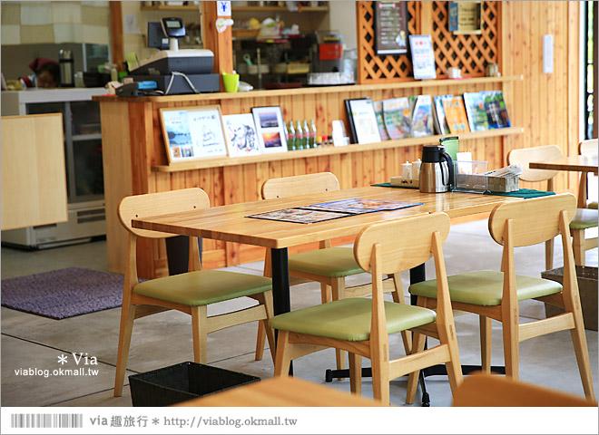 【釧路旅遊景點】釧路濕原一日遊好好玩!釧路川獨木舟、釧路濕原norokko號、細岡展望台