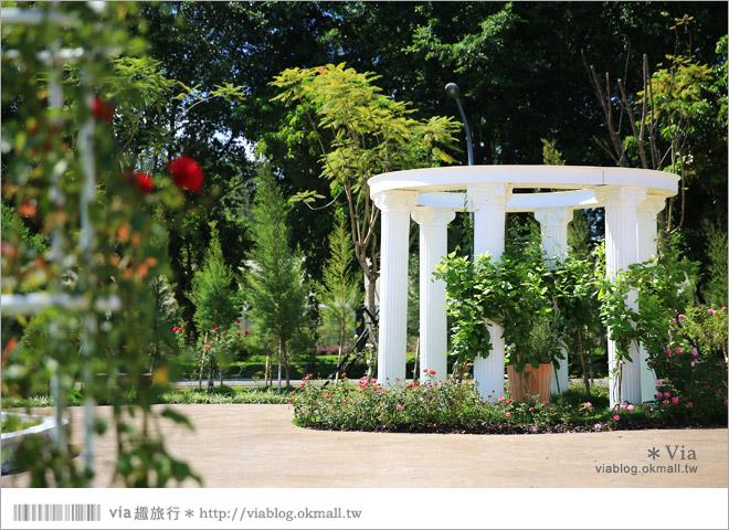 【雲林景點一日遊】雲林古坑蘿莎玫瑰莊園~玫瑰花園休日遊憩好去處‧香味滿山城!