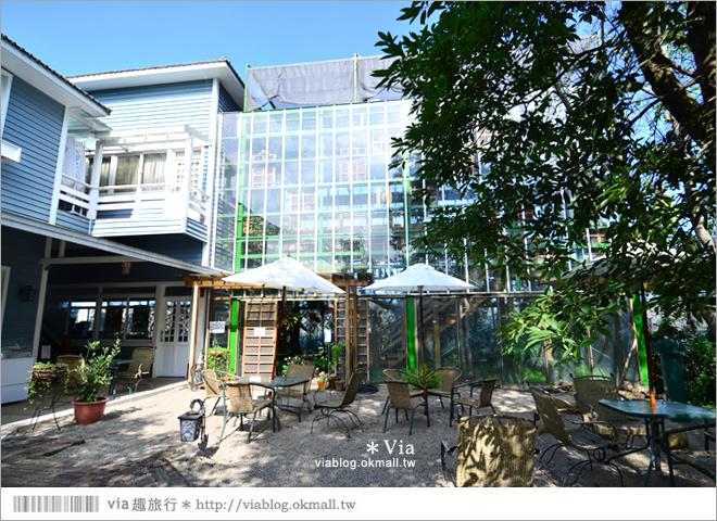 【新社餐廳推薦】千樺花園餐廳~四季皆美!佔地上千坪的森林系花園餐廳