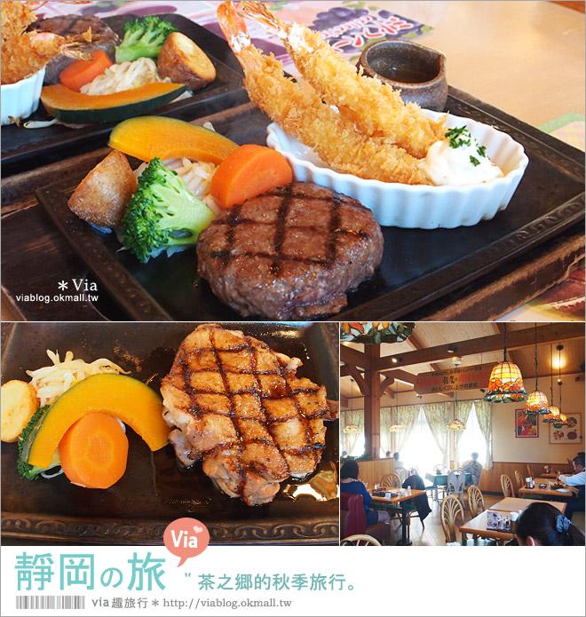【靜岡自由行程】靜岡旅遊~茶之鄉的秋季旅行《六日行程篇》跟著Via醬玩西靜岡!