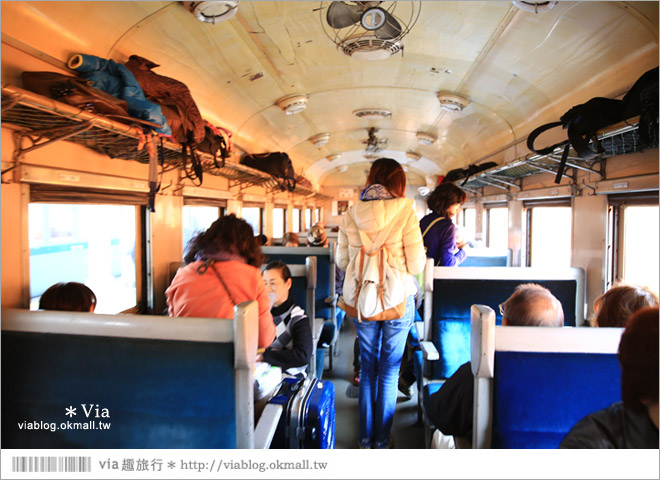 【靜岡旅遊】大井川鐵道(上)~新金谷車站/搭乘SL蒸汽火車、來趟懷舊的鐵道旅行!