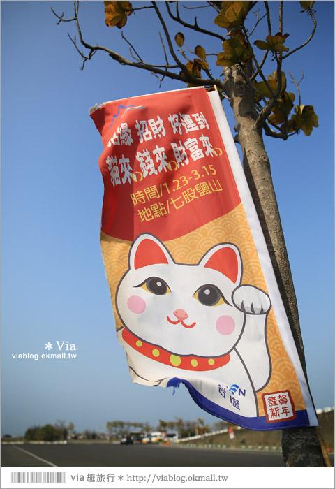 【七股鹽山】台南鹽山一日遊~鹽山招財貓!期間限定~在台南等大家來玩囉!