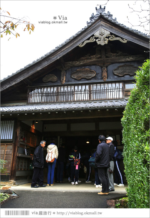【濱松旅遊(上)】靜岡濱松之旅~億萬年打造而成的「龍岩洞」+國家指定名勝「龍潭寺名園」