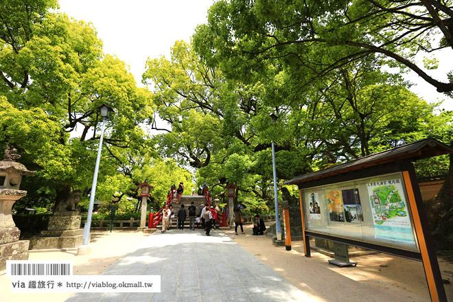 【九州旅遊】福岡旅遊景點‧太宰府天滿宮~必去!漫遊參道及最紅求學問成就名所!