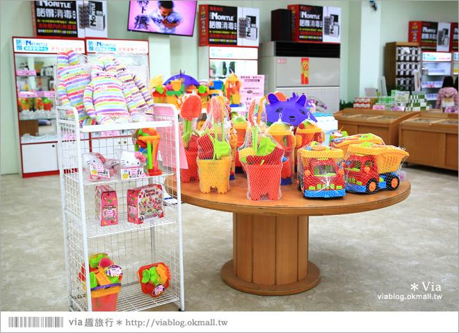 【嘉義觀光工廠】諾得健康世界休閒生態園區~有峇里島風的園地!親子出遊最愛!