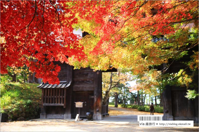 【青森賞楓】青森紅葉景點~弘前城‧不止櫻花季美!紅葉季也是緋紅迷人的旅點!