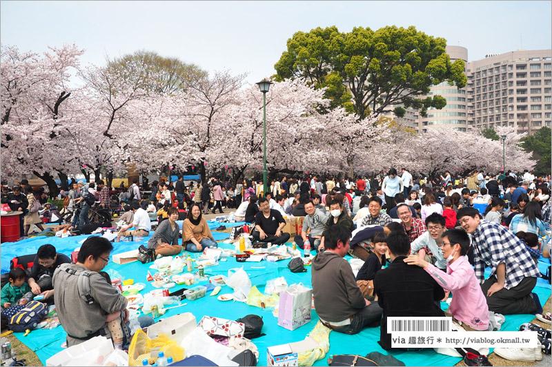【名古屋賞櫻】鶴舞公園~日本100大賞櫻名所‧1200株綻放的櫻花超壯觀!美翻了!