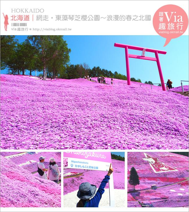 【北海道旅遊】網走|大空町東藻琴芝櫻公園~絕美的粉紅國度!一生一定要看一次的美景!