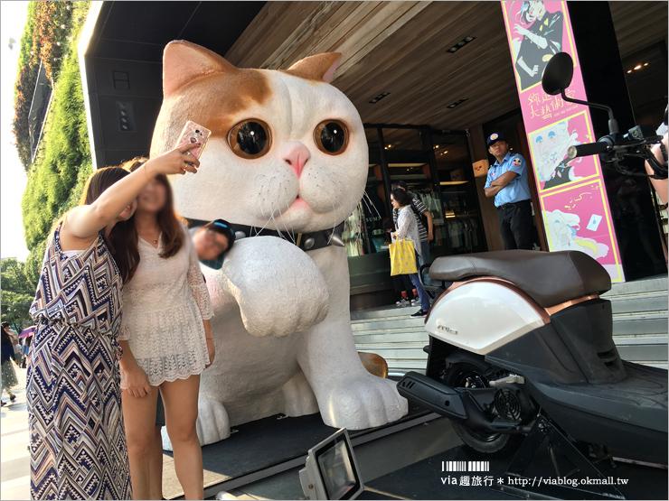 【台中勤美誠品綠園道】台中街頭出現萌翻天的大貓咪?(展覽已結束)趕快來去看看勤美誠品最新活動!