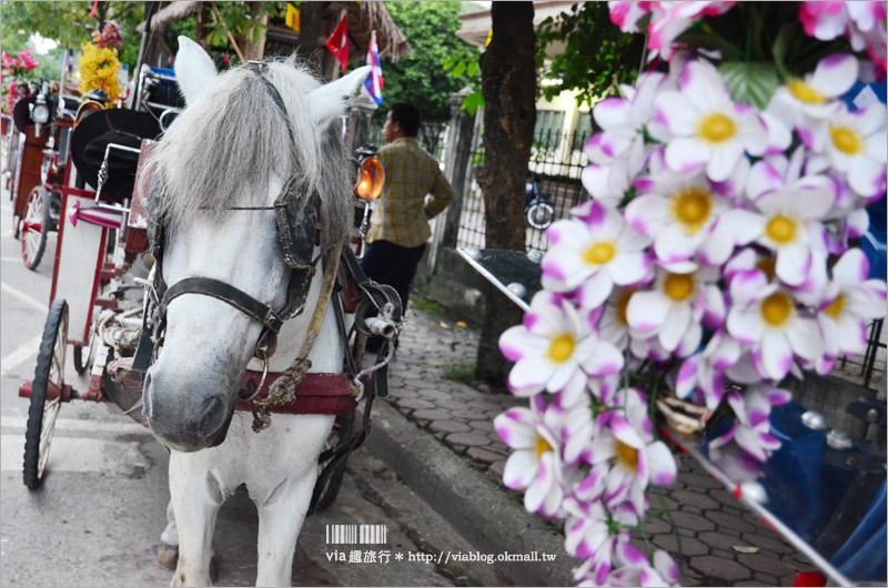 【泰國旅遊】南邦(LamPang)小旅行~來到泰國唯一的馬車之城旅行去!