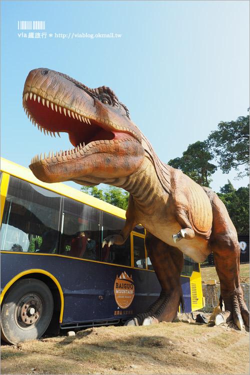 【彰化恐龍】百果山探索樂園~恐龍出沒!大型恐龍會動會吼叫~霸王龍、腕龍、迅猛龍等超霸氣登場!