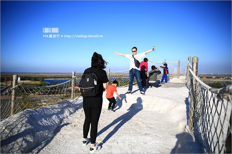 【台南七股鹽山】新亮點來了~鹽山上的超萌貓頭鷹!今年走春的最佳旅行地~GO!