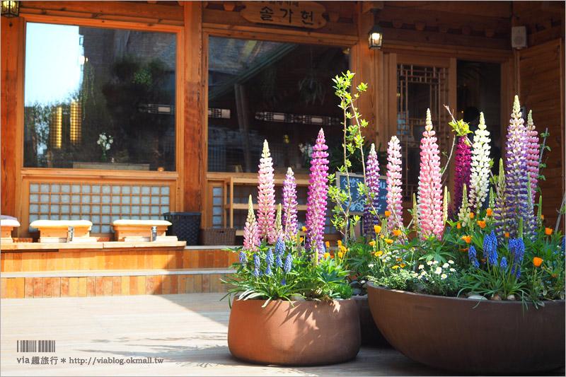 【首爾旅遊】松佳軒솔가헌韓屋韓方咖啡館~新玩法!在傳統韓屋中放鬆享受足浴+養生茶的放鬆小旅行!