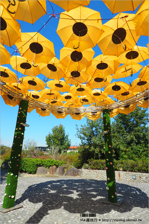 【台中景點】台中太平屯區藝文中心~傘花朵朵開!繽紛的七彩傘花,白天夜晚都好好拍!