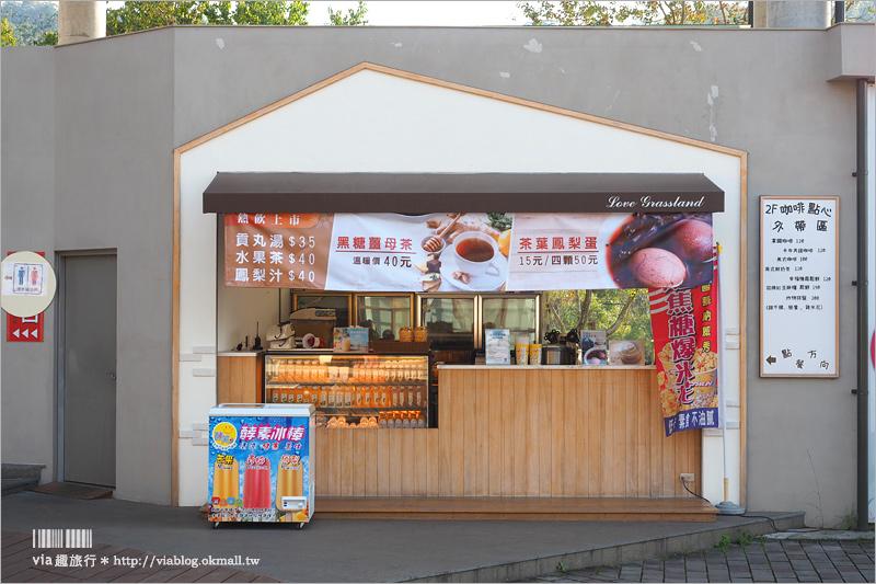【嘉義免費景點】旺萊山X愛情大草原~愛情圖書館浪漫又好拍!還有免費鳳梨酥可品嚐