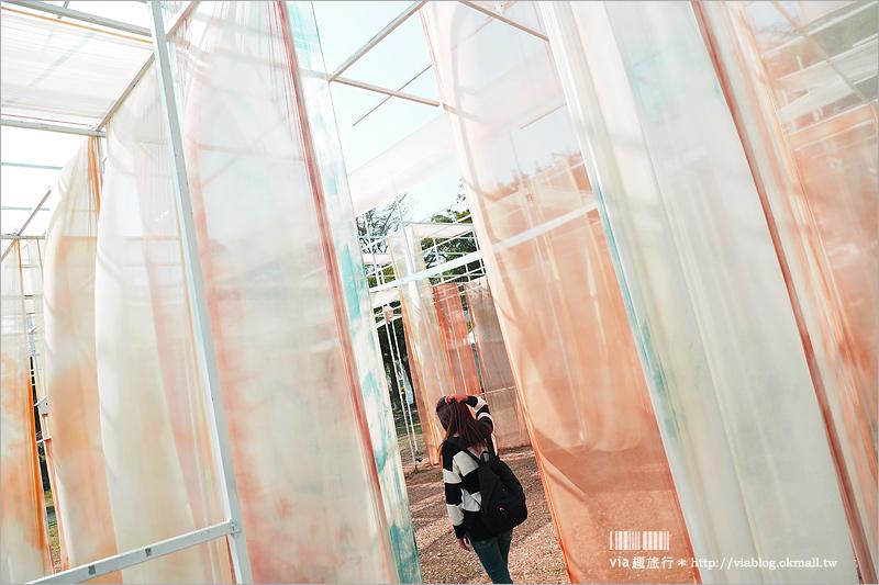 【月津港燈節】台南燈會~藝術感滿點!走遊不同的月津港風采,白天來玩一樣精彩!