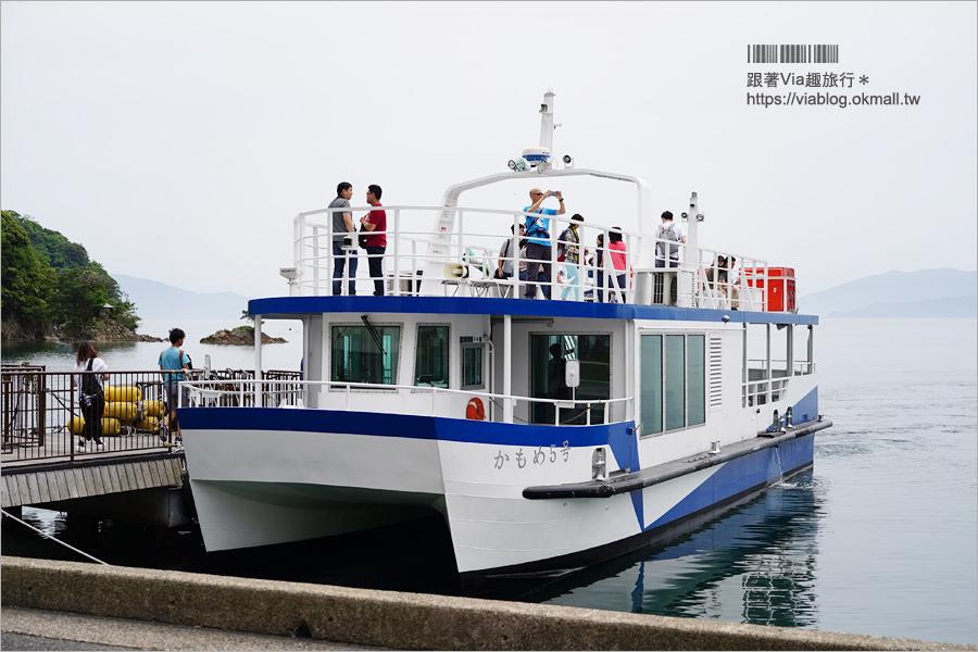 【京都景點】伊根舟屋~來去海上舟屋感受海之京都魅力‧船上餵食秀好特別又刺激!