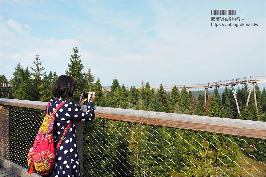 【斯洛伐克自由行】Treetop walk Bachledka~森林中樹頂步道,挑戰心臟之餘又有美景相伴的新景點!