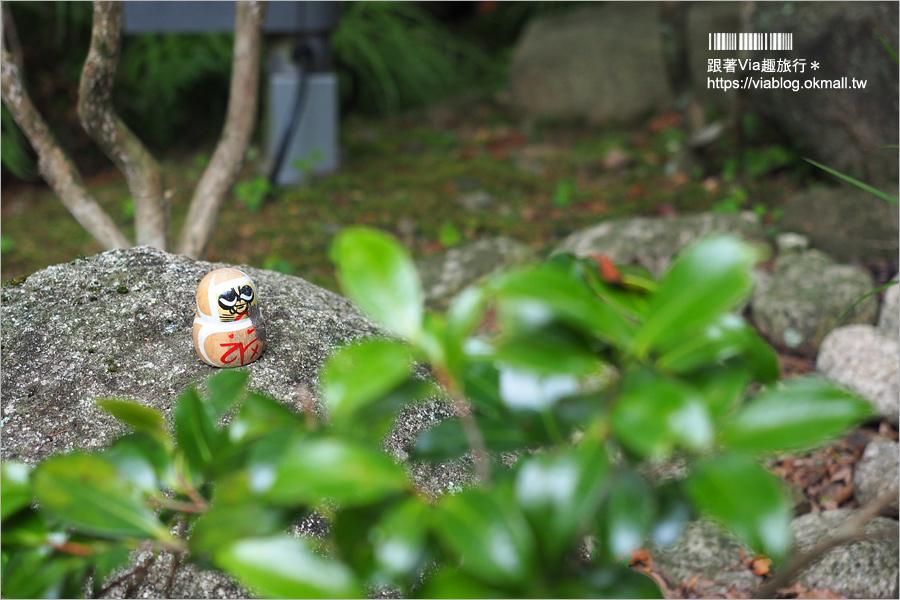 【大阪一日遊】勝尾寺~滿滿的達摩不倒翁好驚人!祈求勝運的寺廟~大阪必去的紅葉名所!
