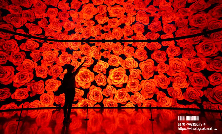 【台中花博后里森林園區】友達微美館~IG打卡景點!萬花筒般的花朵牆超夢幻~森林園區必逛的超美展館!
