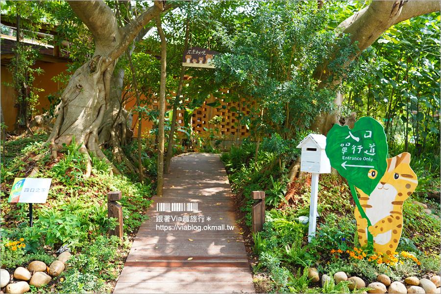 【台中花博】后里馬場森林園區~精彩搶先看:國際庭園、原民主題、石虎的家、森林市集都在這一區!