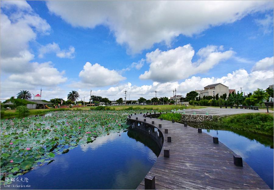 【雲林景點】麥寮‧新吉社區|金木園區~免費開放!浪漫的曲型木棧道,夏季荷花池畔盛開美不勝收!