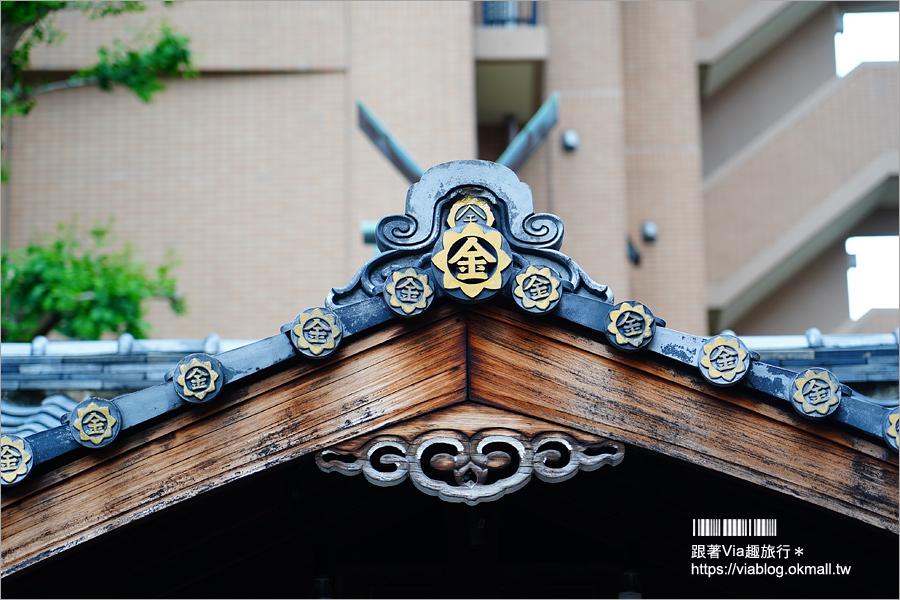 【京都景點】御金神社~超美金色鳥居!金色版銀杏繪馬!來日本體驗「合法洗錢」的樂趣!