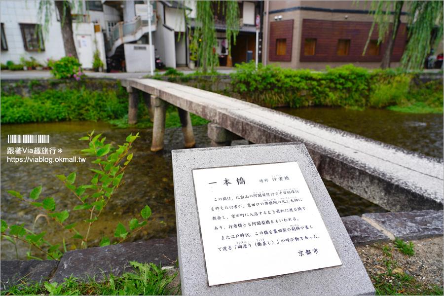 【京都私房景點】京都一本橋/行者橋~柳樹相伴的古老小石橋,底下溪水超級清澈的小秘境旅點!