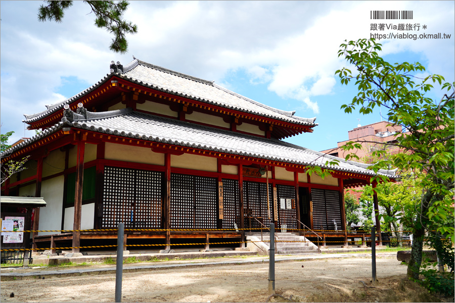 【奈良景點】奈良古廟之旅~在地人才知的私房寺院看這篇:小房觀音寺/唐招提寺/西大寺