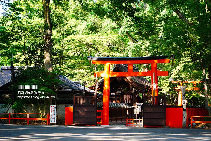 【京都河合神社】日本第一美麗神神社~鏡繪馬好有趣!愛美的你一定要來的美容神社!