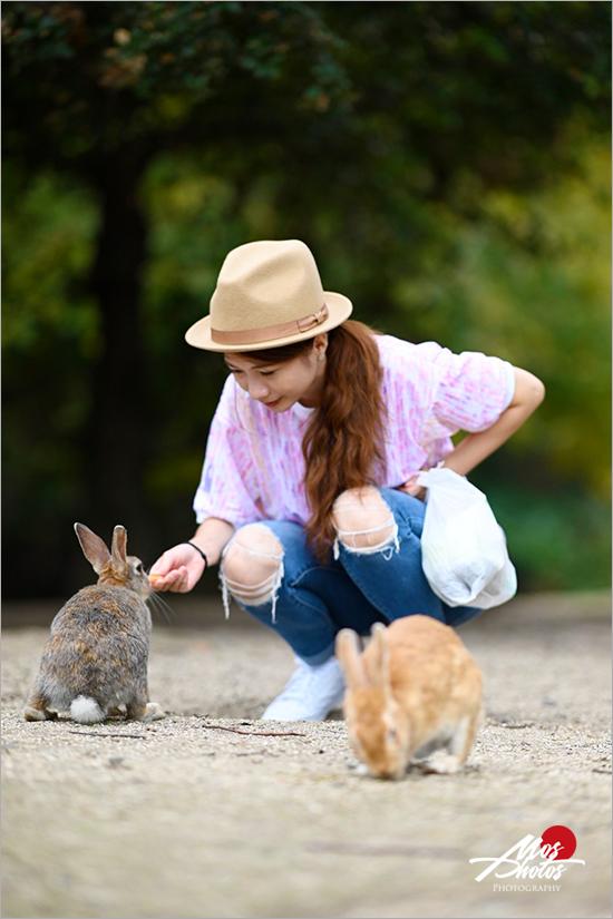 【廣島大久野島】必去超萌兔子島~最療癒的小島,萌呆可愛的兔樂園,成群萌兔信徒跟著你~